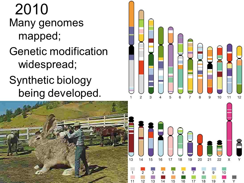2010 Many genomes mapped; Genetic modification widespread; Synthetic biology being developed.