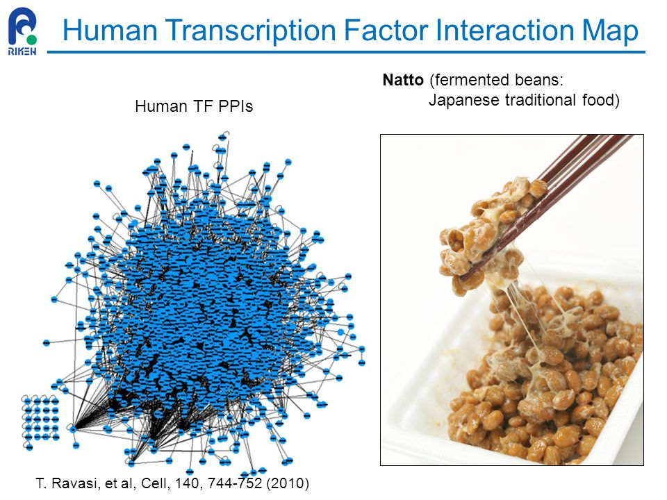 Human Transcription Factor Interaction Map Natto (fermented beans: Japanese traditional food) Human TF PPIs T. Ravasi, et al, Cell, 140, 744-752 (2010