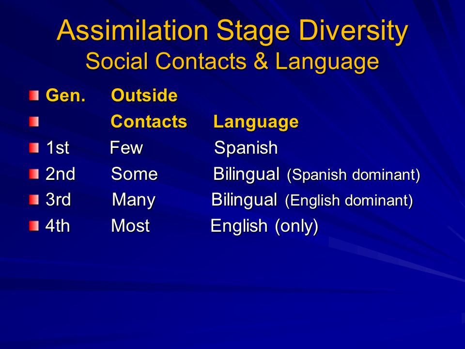 Assimilation Stage Diversity Social Contacts & Language Gen.