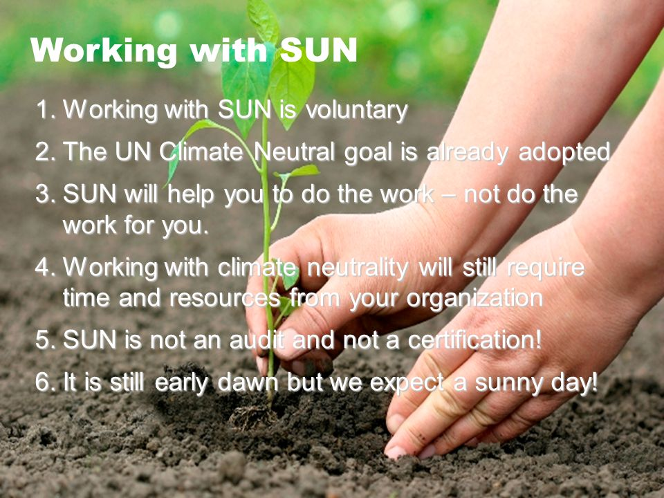 SUN Working with SUN 1.Working with SUN is voluntary 2.The UN Climate Neutral goal is already adopted 3.SUN will help you to do the work – not do the work for you.