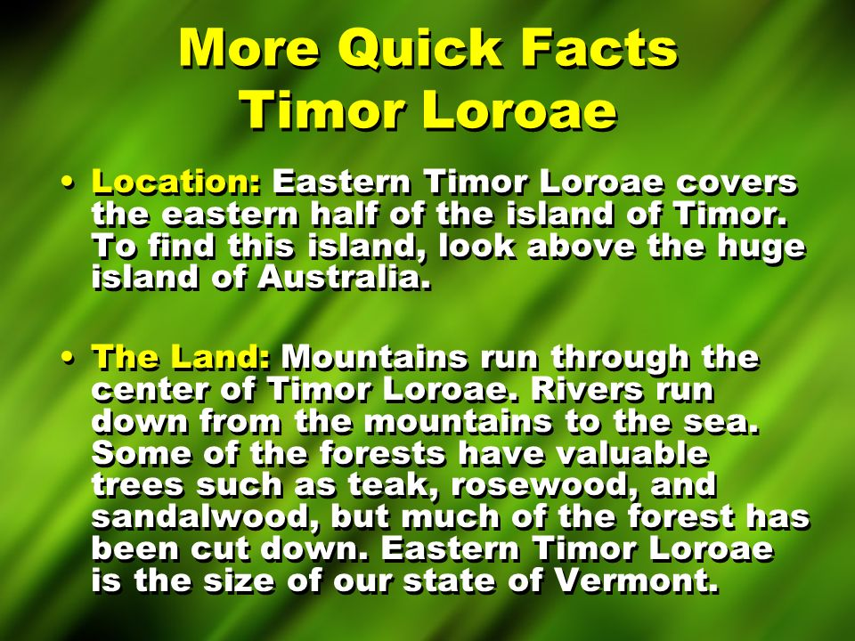 More Quick Facts East Timor Weather: The weather in eastern Timor Loroae is very warm year-round.