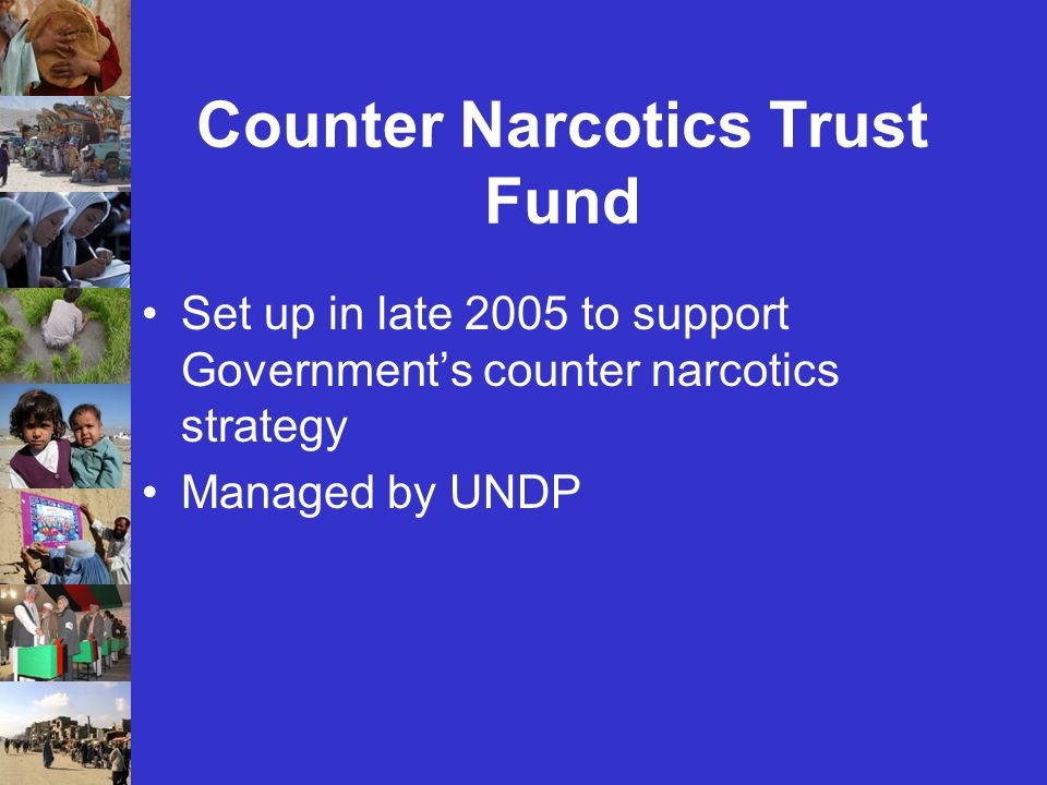 Counter Narcotics Trust Fund Set up in late 2005 to support Governments counter narcotics strategy Managed by UNDP