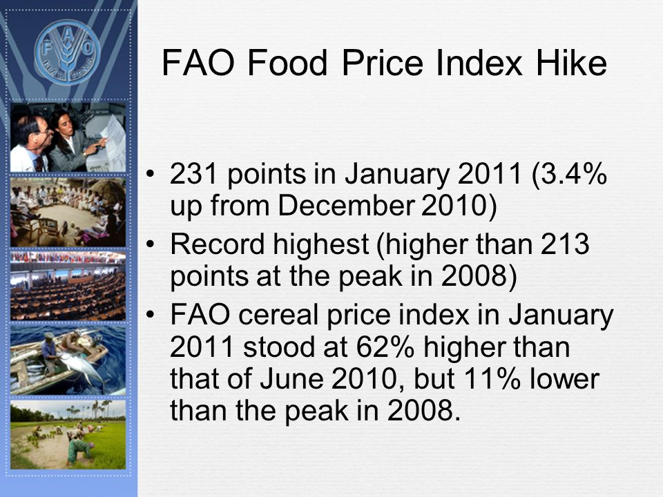 FAO Food Price Index Hike 231 points in January 2011 (3.4% up from December 2010) Record highest (higher than 213 points at the peak in 2008) FAO cereal price index in January 2011 stood at 62% higher than that of June 2010, but 11% lower than the peak in 2008.