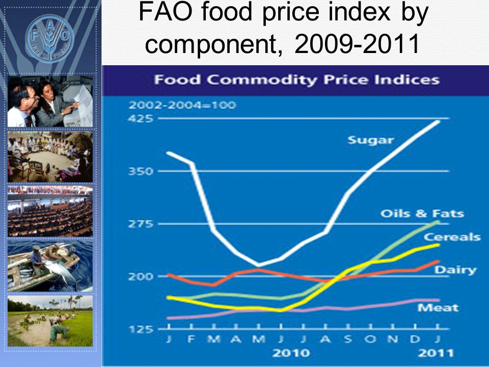 FAO food price index by component, 2009-2011