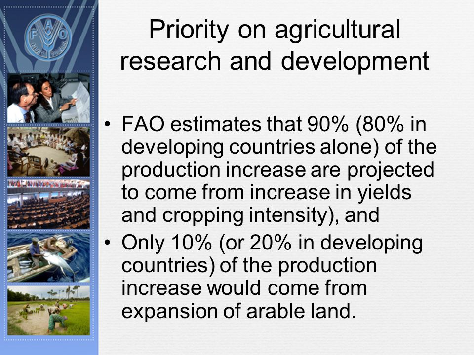 Priority on agricultural research and development FAO estimates that 90% (80% in developing countries alone) of the production increase are projected to come from increase in yields and cropping intensity), and Only 10% (or 20% in developing countries) of the production increase would come from expansion of arable land.