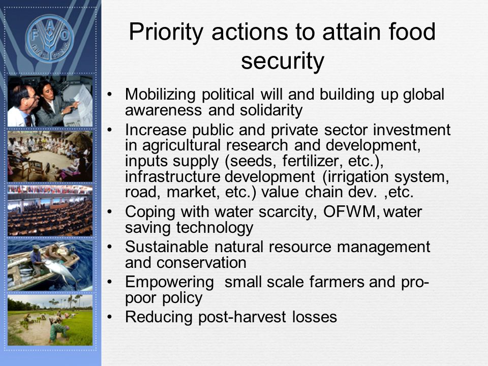 Priority actions to attain food security Mobilizing political will and building up global awareness and solidarity Increase public and private sector investment in agricultural research and development, inputs supply (seeds, fertilizer, etc.), infrastructure development (irrigation system, road, market, etc.) value chain dev.,etc.