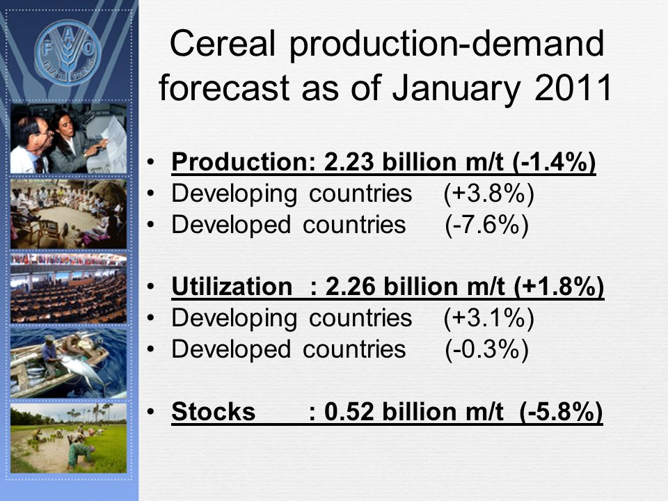Cereal production-demand forecast as of January 2011 Production: 2.23 billion m/t (-1.4%) Developing countries (+3.8%) Developed countries (-7.6%) Utilization : 2.26 billion m/t (+1.8%) Developing countries (+3.1%) Developed countries (-0.3%) Stocks : 0.52 billion m/t (-5.8%)