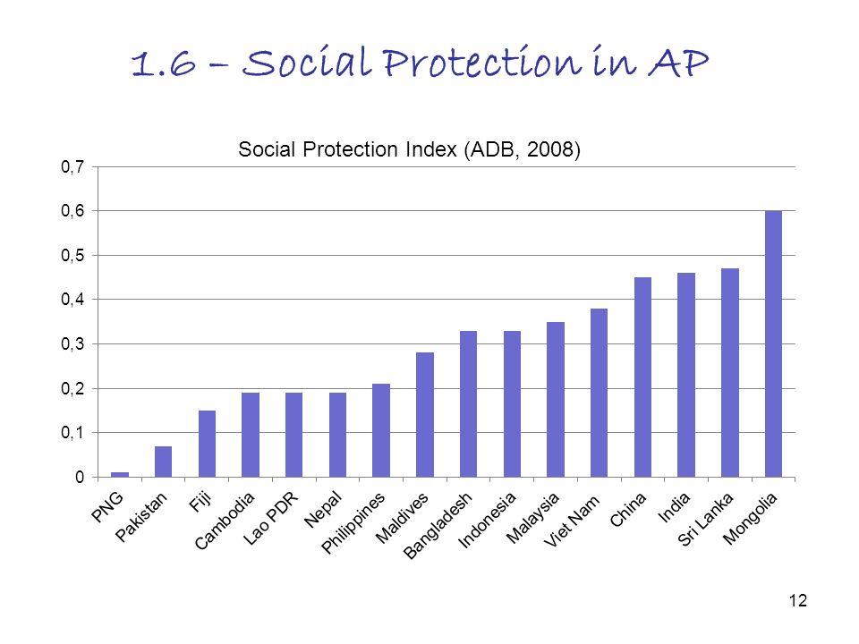 12 1.6 – Social Protection in AP