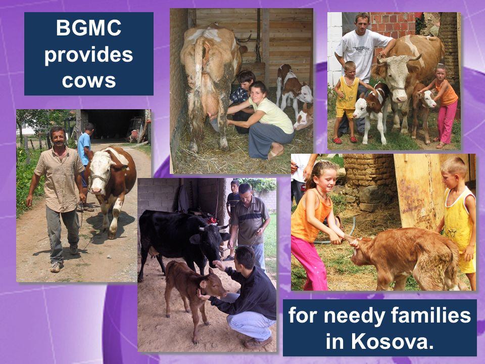 BGMC provides cows for needy families in Kosova.
