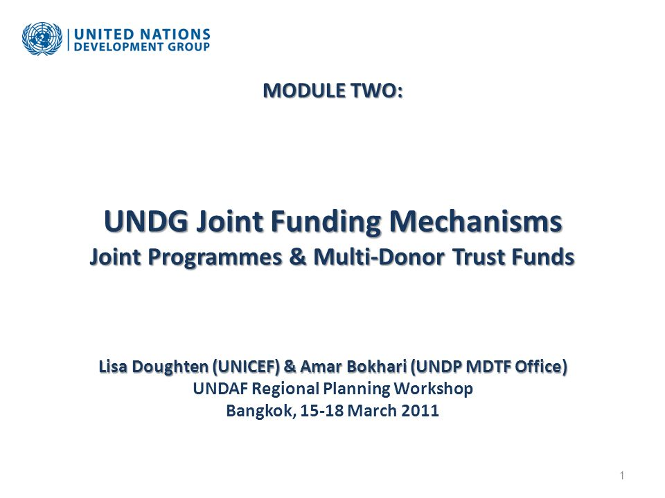 MODULE TWO: UNDG Joint Funding Mechanisms Joint Programmes & Multi-Donor Trust Funds Lisa Doughten (UNICEF) & Amar Bokhari (UNDP MDTF Office) MODULE T