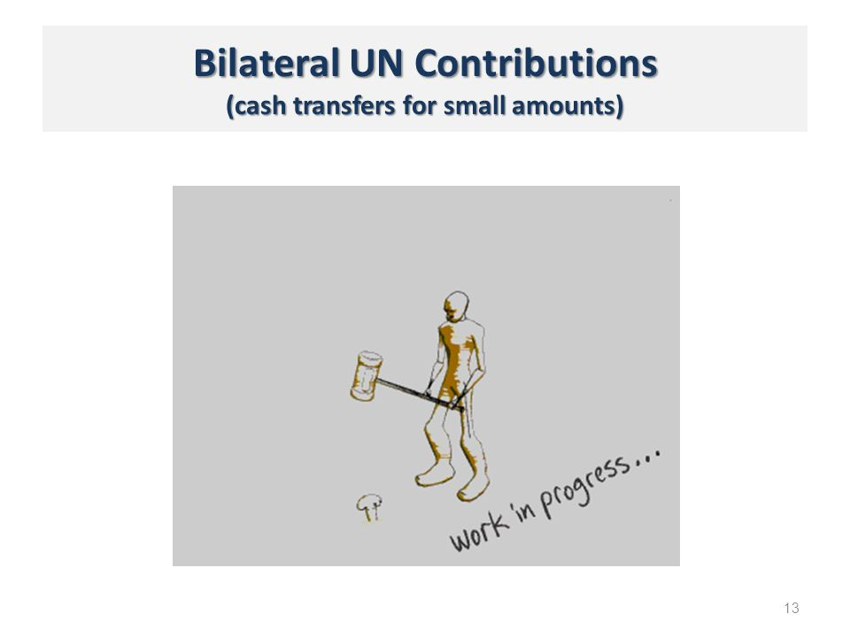 Bilateral UN Contributions (cash transfers for small amounts) 13