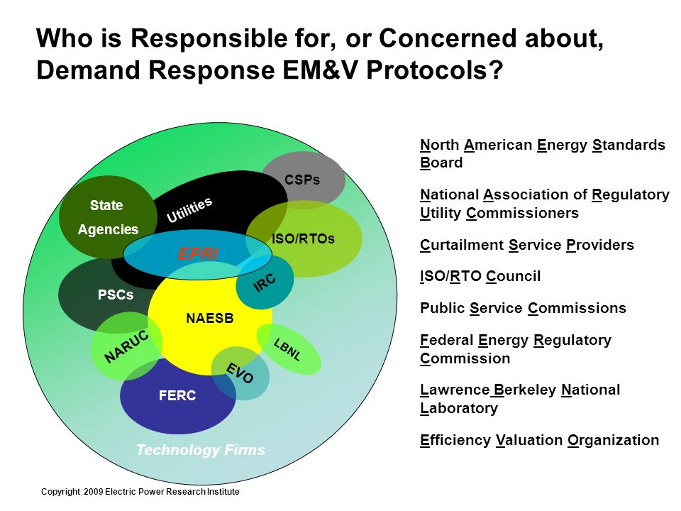 Copyright 2009 Electric Power Research Institute Who is Responsible for, or Concerned about, Demand Response EM&V Protocols.