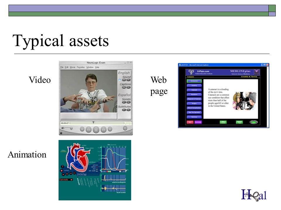 Typical assets Video Animation Web page