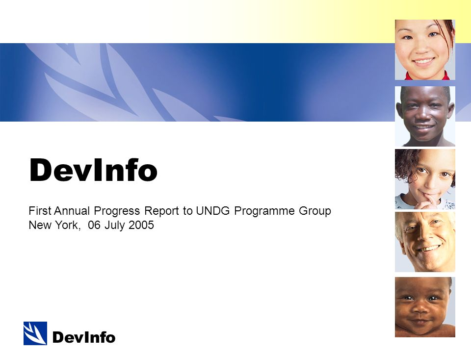DevInfo First Annual Progress Report to UNDG Programme Group New York, 06 July 2005