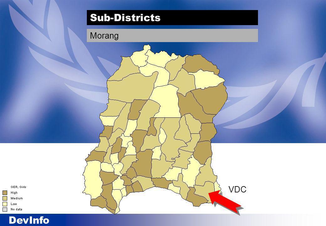 DevInfo VDC Sub-Districts Morang