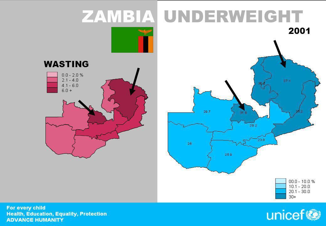 DevInfo ZAMBIAUNDERWEIGHT 2001 WASTING