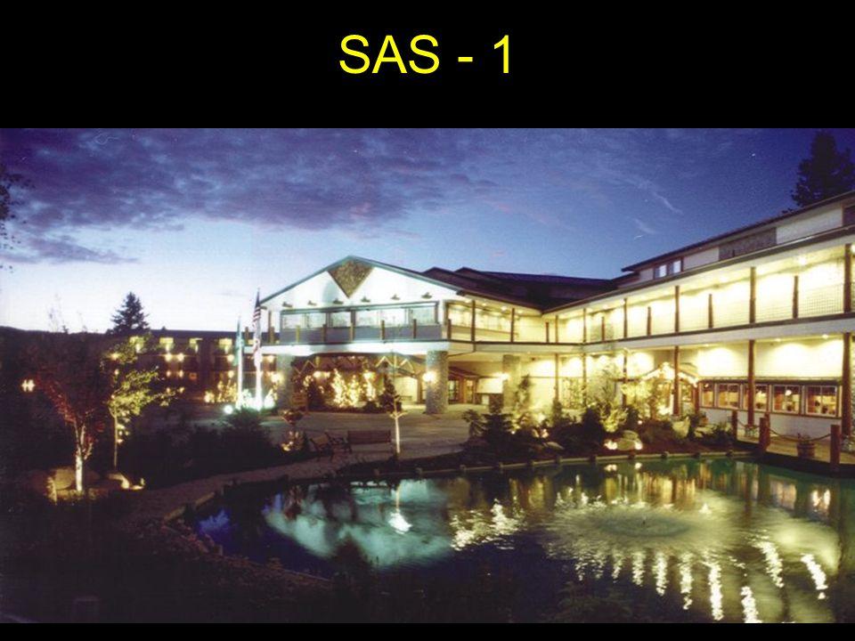 SAS - 1