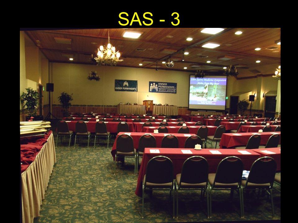 SAS - 3