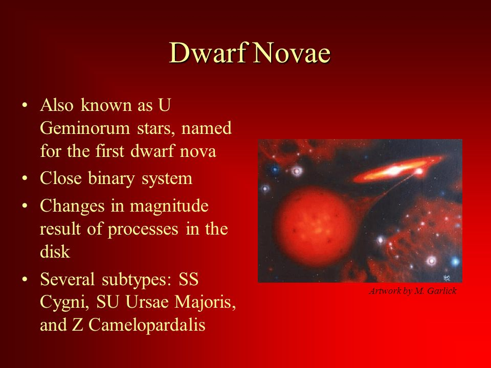 Dwarf Novae Also known as U Geminorum stars, named for the first dwarf nova Close binary system Changes in magnitude result of processes in the disk Several subtypes: SS Cygni, SU Ursae Majoris, and Z Camelopardalis Artwork by M.
