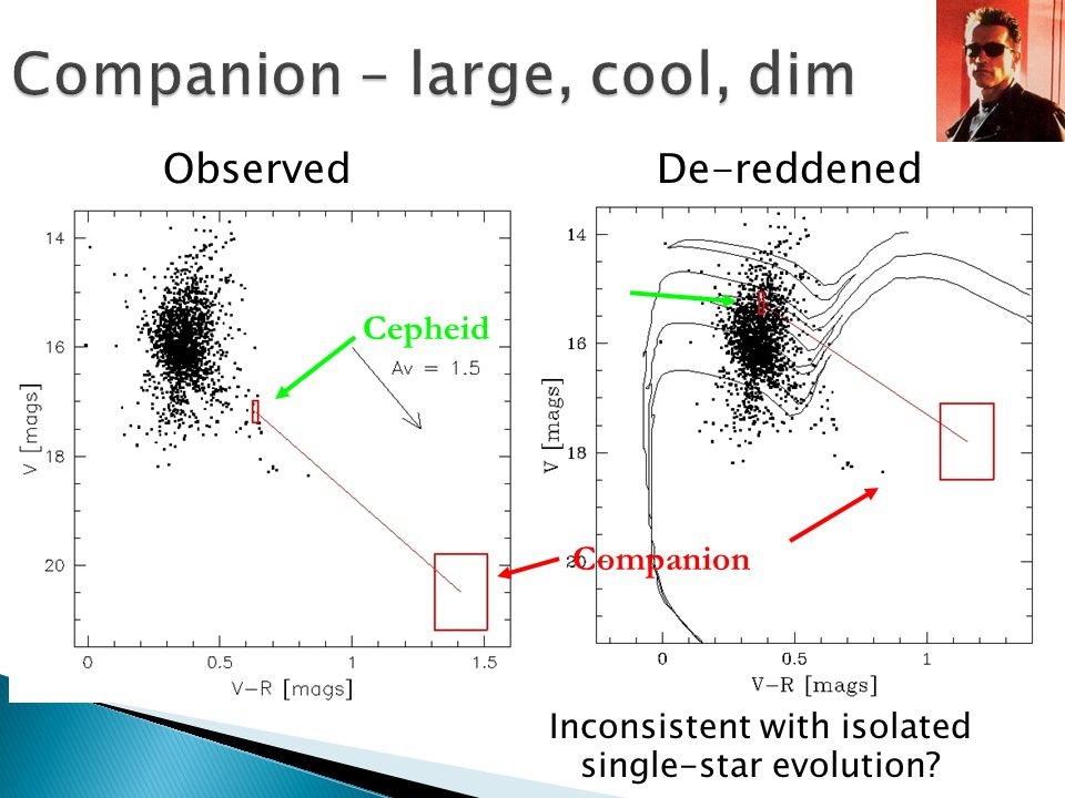 Companion – large, cool, dim Inconsistent with isolated single-star evolution? Observed Cepheid Companion De-reddened