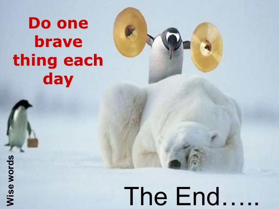 Wise words The End….. Do one brave thing each day