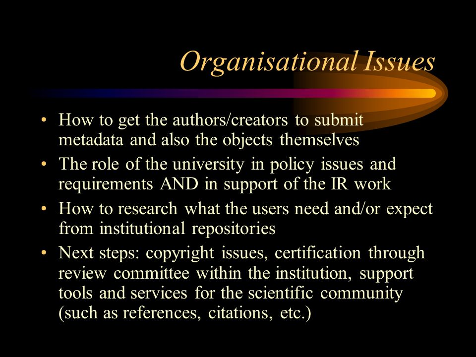 Organisational Issues How to get the authors/creators to submit metadata and also the objects themselves The role of the university in policy issues and requirements AND in support of the IR work How to research what the users need and/or expect from institutional repositories Next steps: copyright issues, certification through review committee within the institution, support tools and services for the scientific community (such as references, citations, etc.)