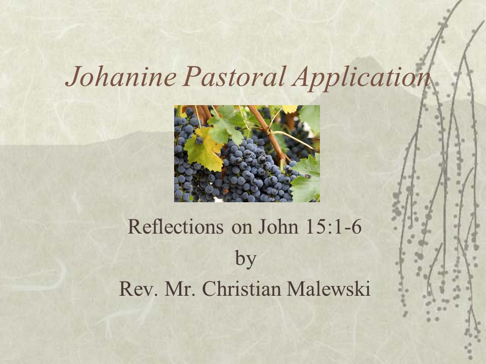 Johanine Pastoral Application Reflections on John 15:1-6 by Rev. Mr. Christian Malewski