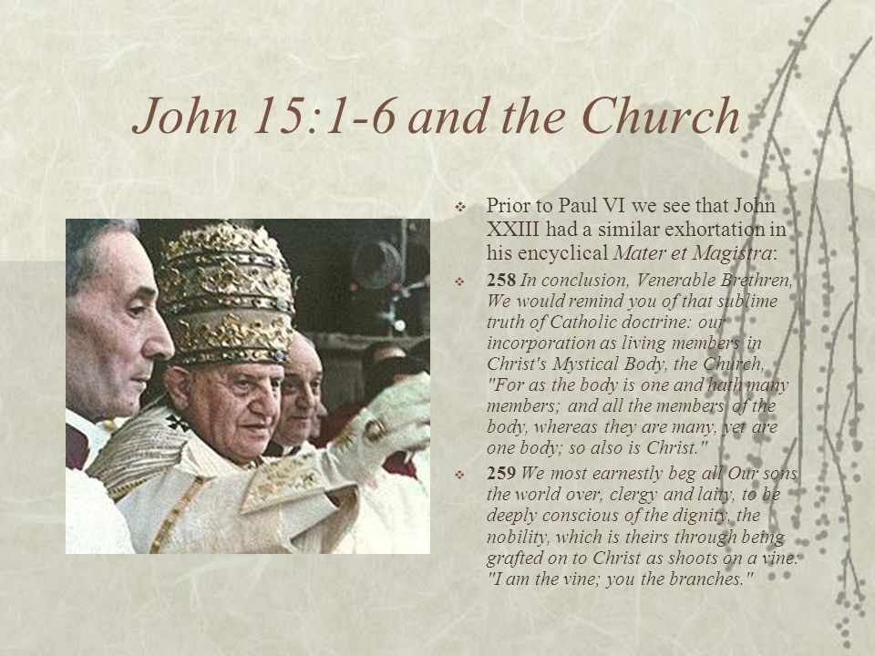 John 15:1-6 and the Church Prior to Paul VI we see that John XXIII had a similar exhortation in his encyclical Mater et Magistra: 258 In conclusion, Venerable Brethren, We would remind you of that sublime truth of Catholic doctrine: our incorporation as living members in Christ s Mystical Body, the Church, For as the body is one and hath many members; and all the members of the body, whereas they are many, yet are one body; so also is Christ. 259 We most earnestly beg all Our sons the world over, clergy and laity, to be deeply conscious of the dignity, the nobility, which is theirs through being grafted on to Christ as shoots on a vine: I am the vine; you the branches.
