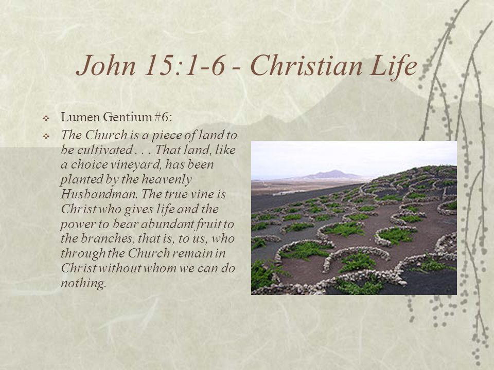 John 15:1-6 - Christian Life Lumen Gentium #6: The Church is a piece of land to be cultivated...