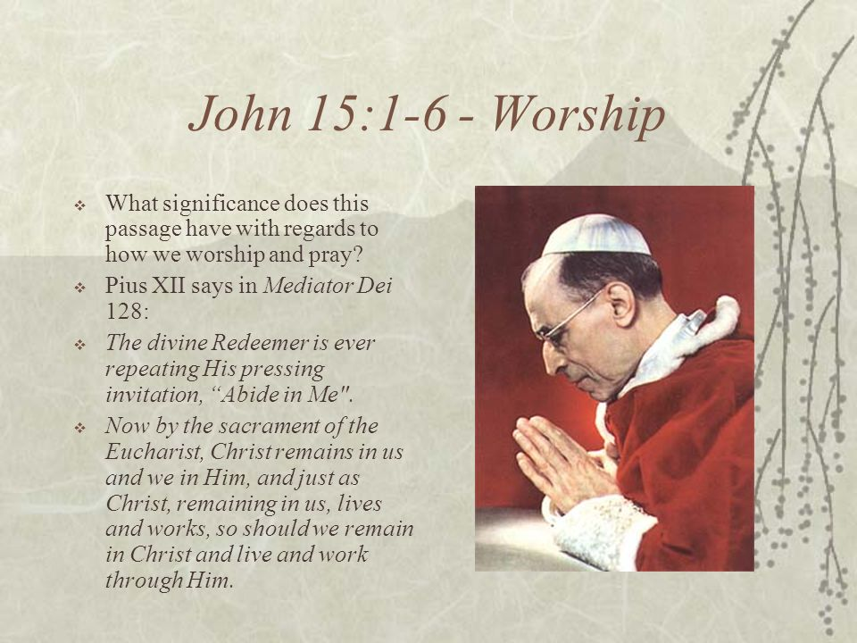 John 15:1-6 - Worship What significance does this passage have with regards to how we worship and pray? Pius XII says in Mediator Dei 128: The divine