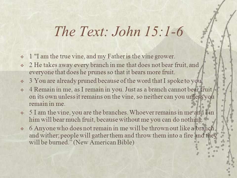 The Text: John 15:1-6 1 I am the true vine, and my Father is the vine grower.