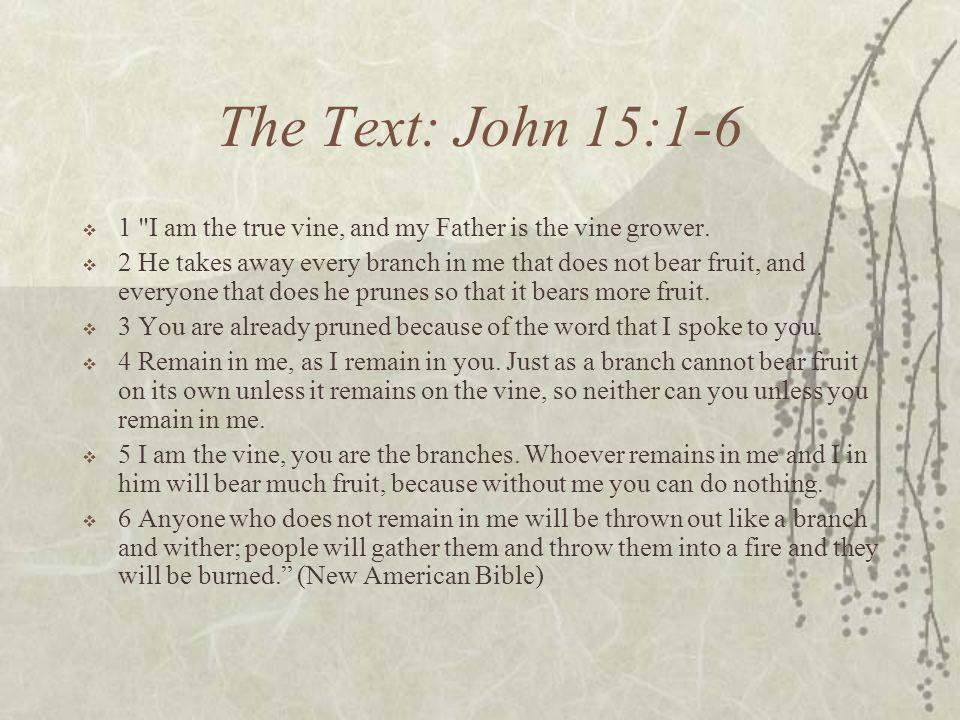 The Text: John 15:1-6 1