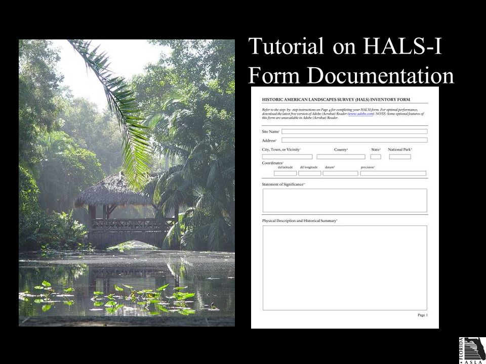 Tutorial on HALS-I Form Documentation