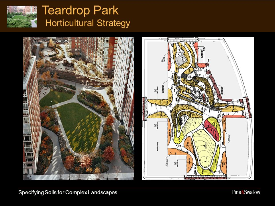 Teardrop Park Horticultural Strategy Specifying Soils for Complex Landscapes Pine&Swallow