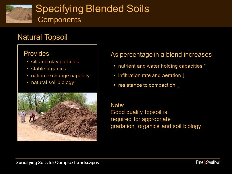 Specifying Soils for Complex Landscapes Pine&Swallow Specifying Blended Soils Components Provides silt and clay particles stable organics cation excha