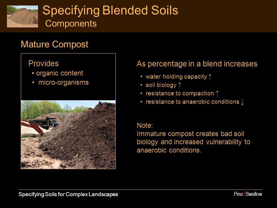 Specifying Soils for Complex Landscapes Pine&Swallow Specifying Blended Soils Components Provides organic content micro-organisms As percentage in a blend increases water holding capacity soil biology resistance to compaction resistance to anaerobic conditions Note: Immature compost creates bad soil biology and increased vulnerability to anaerobic conditions.