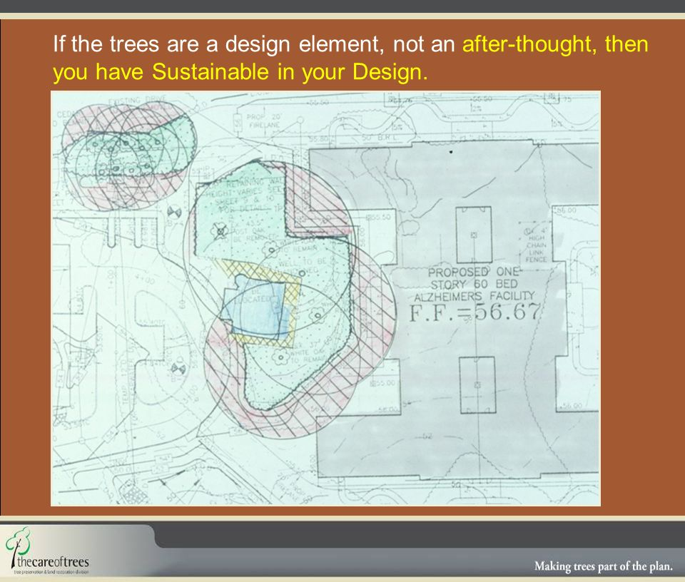 If the trees are a design element, not an after-thought, then you have Sustainable in your Design.