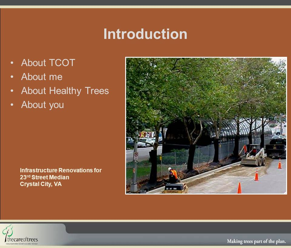 Introduction About TCOT About me About Healthy Trees About you Infrastructure Renovations for 23 rd Street Median Crystal City, VA