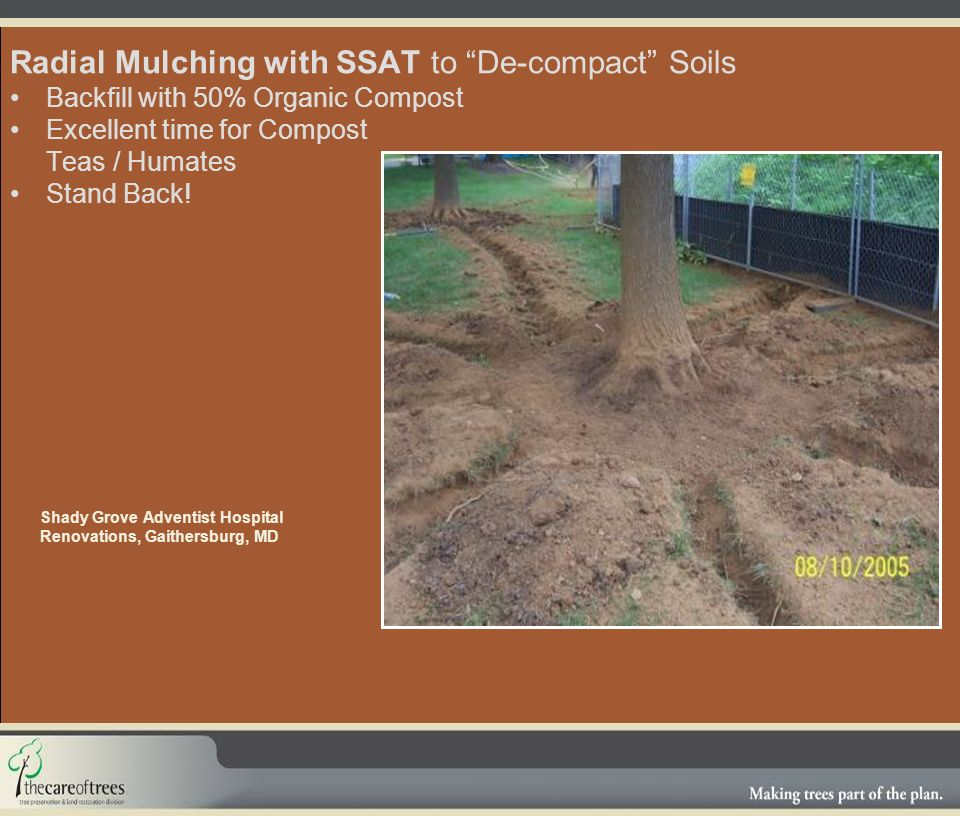 Radial Mulching with SSAT to De-compact Soils Backfill with 50% Organic Compost Excellent time for Compost Teas / Humates Stand Back.