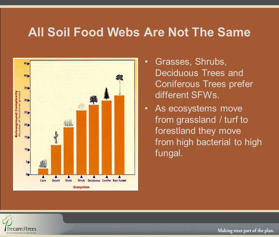All Soil Food Webs Are Not The Same Grasses, Shrubs, Deciduous Trees and Coniferous Trees prefer different SFWs.