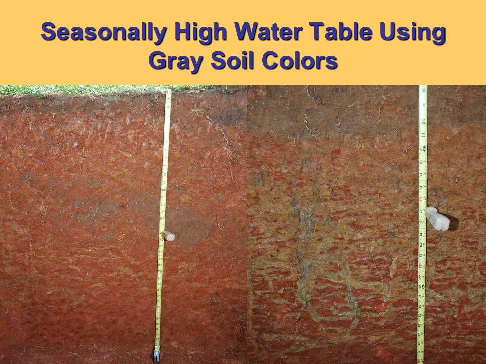 Seasonally High Water Table Using Gray Soil Colors