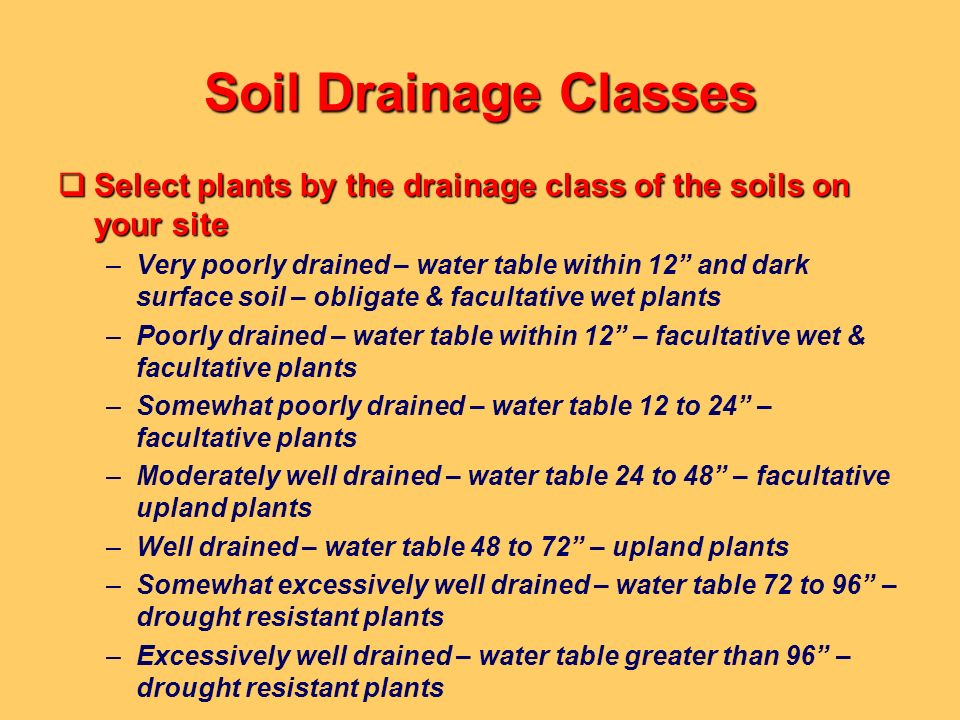 Soil Drainage Classes Select plants by the drainage class of the soils on your site Select plants by the drainage class of the soils on your site –Ver