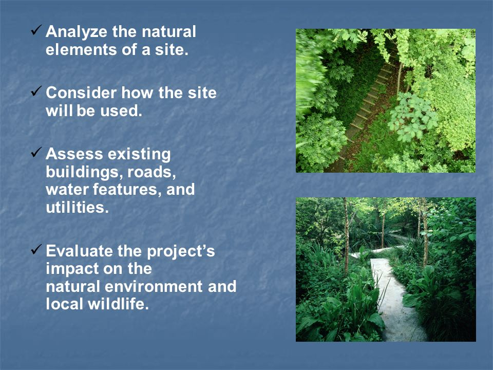 Analyze the natural elements of a site. Consider how the site will be used.