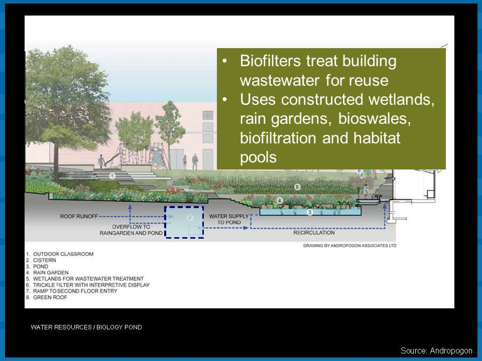 Biofilters treat building wastewater for reuse Uses constructed wetlands, rain gardens, bioswales, biofiltration and habitat pools