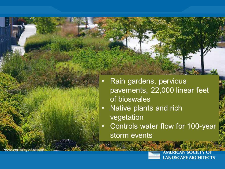 Photo courtesy of Mithun Rain gardens, pervious pavements, 22,000 linear feet of bioswales Native plants and rich vegetation Controls water flow for 100-year storm events