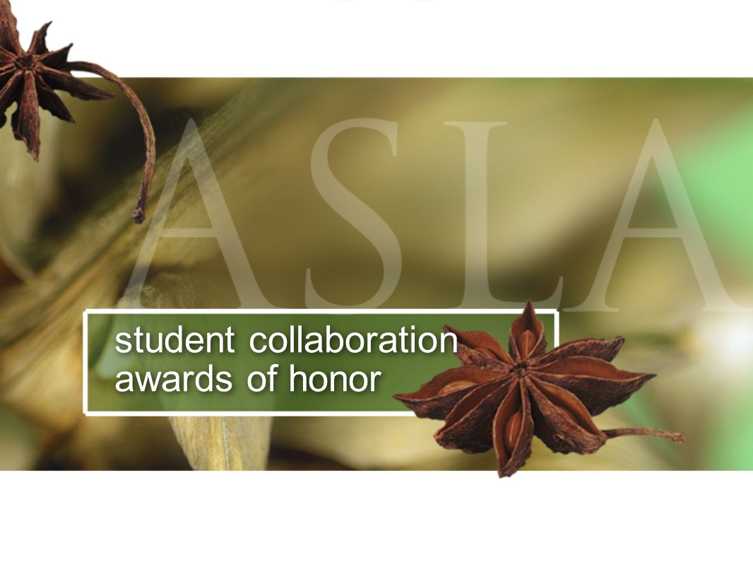 student collaboration awards of honor