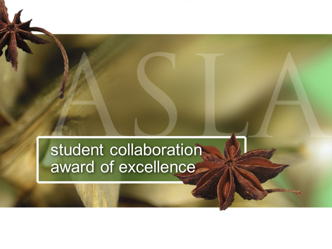 student collaboration award of excellence