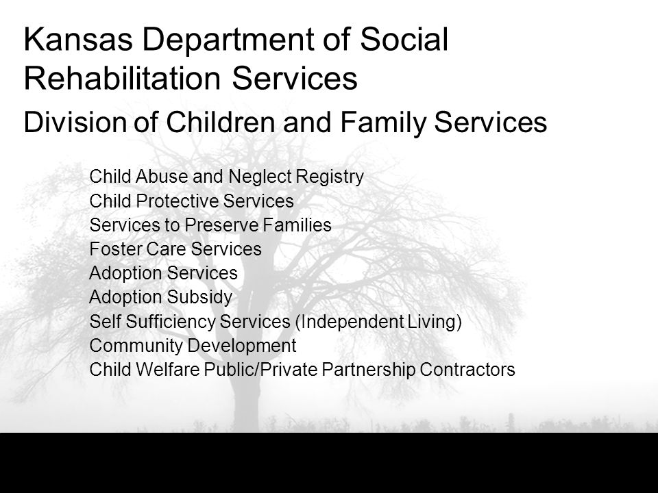 Kansas Department of Social Rehabilitation Services Division of Children and Family Services Child Abuse and Neglect Registry Child Protective Services Services to Preserve Families Foster Care Services Adoption Services Adoption Subsidy Self Sufficiency Services (Independent Living) Community Development Child Welfare Public/Private Partnership Contractors