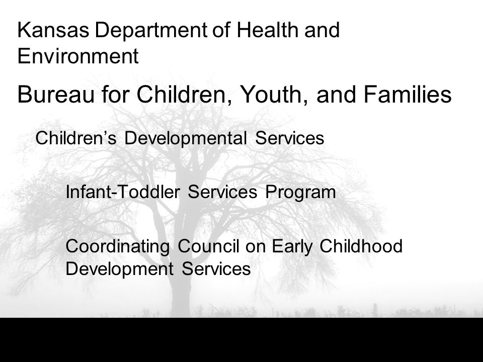 Kansas Department of Health and Environment Bureau for Children, Youth, and Families Childrens Developmental Services Infant-Toddler Services Program Coordinating Council on Early Childhood Development Services