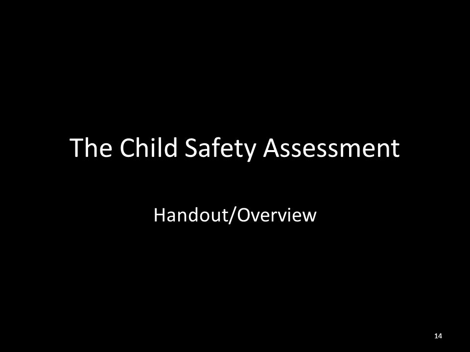 14 The Child Safety Assessment Handout/Overview